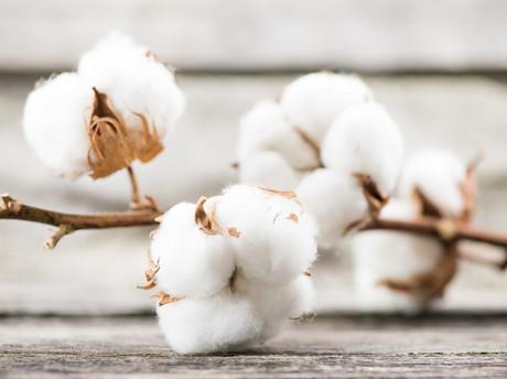 Het is simpel. Let op bij aanschaf van kleding die direct op de huid zijn en dit geval dus broeken dat het grootste deel bestaat uit katoen of viscose, een deel polyester en een deel elasthan (dit laatste is met 2% al genoeg voor comfort). Katoen of viscose zorgen voor een aangenaam gevoel op de huid en ook dat de stof ademt. Elasthan geeft flexibiliteit in draagcomfort, maar ook bij het aan- en uittrekken. En polyester, nou ja daar hebben we het al over gehad.